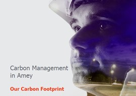 Carbon Management in Amey - pdf download